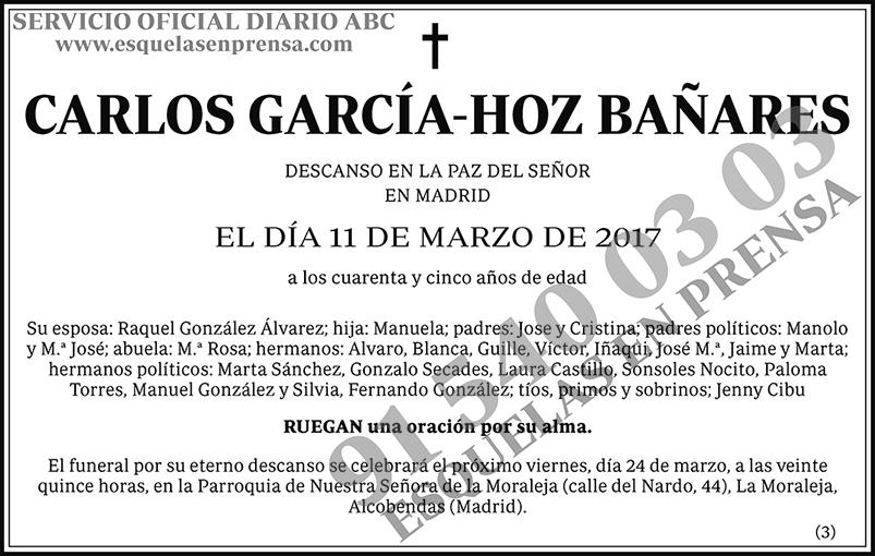 Carlos García-Hoz Bañares